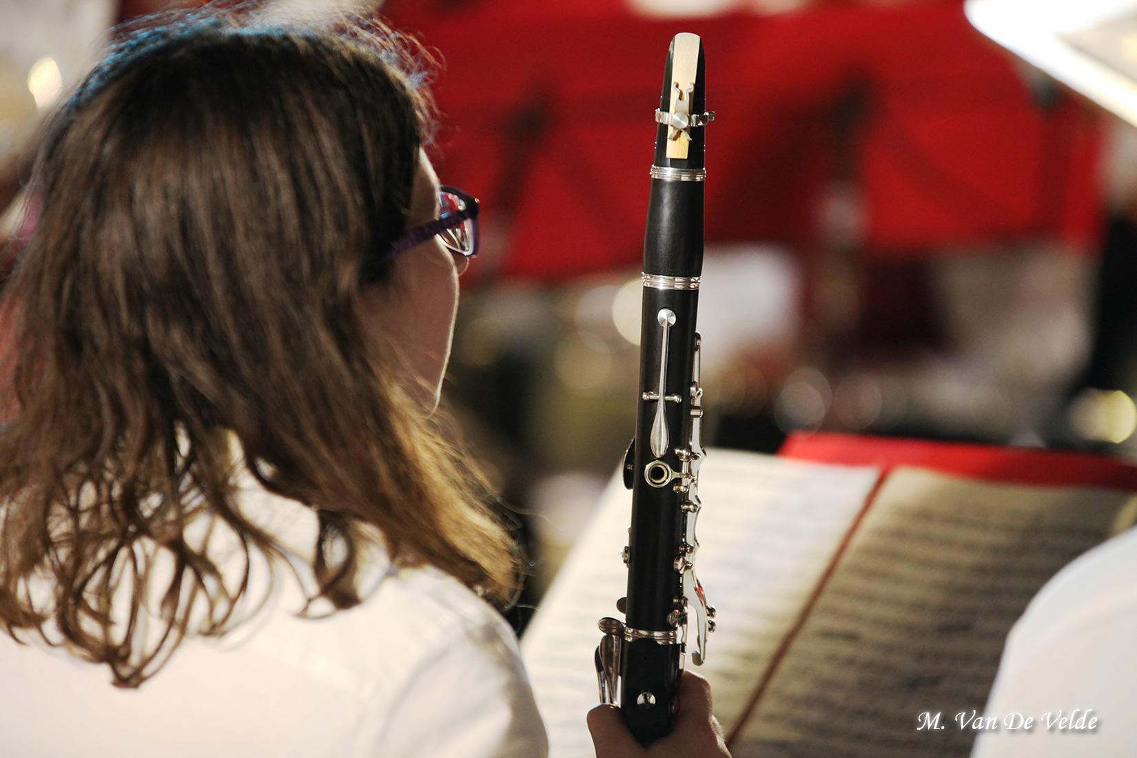 Concert-gala-à-JEMAPPES-(MVDV)-02avr17-(266)