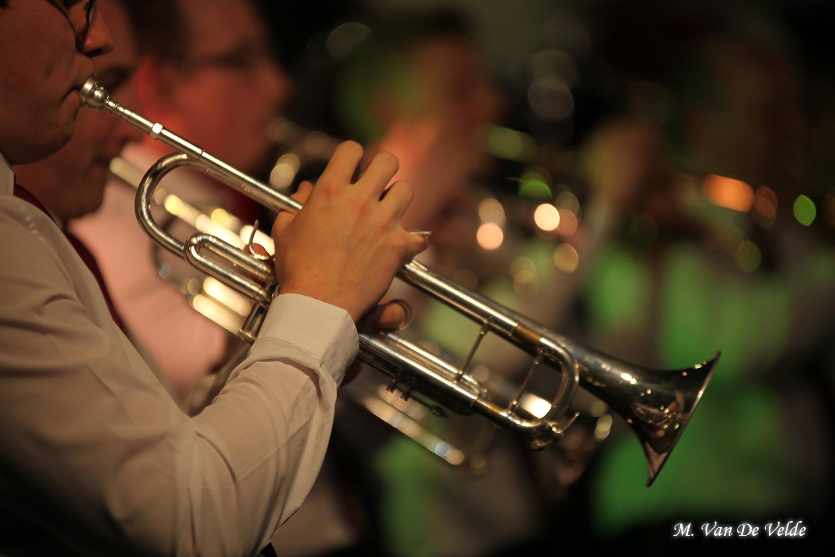 Concert-gala-à-JEMAPPES-(MVDV)-02avr17-(305)