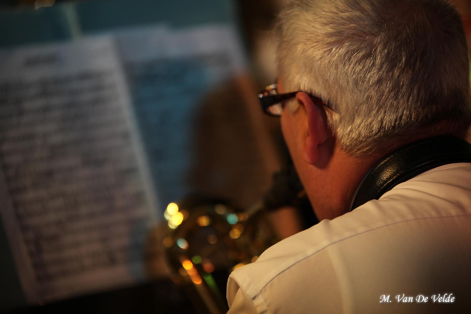 Concert-gala-à-JEMAPPES-(MVDV)-02avr17-(349)