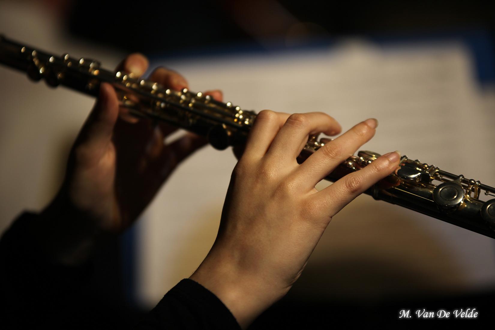 Concert-gala-à-JEMAPPES-(MVDV)-02avr17-(422)