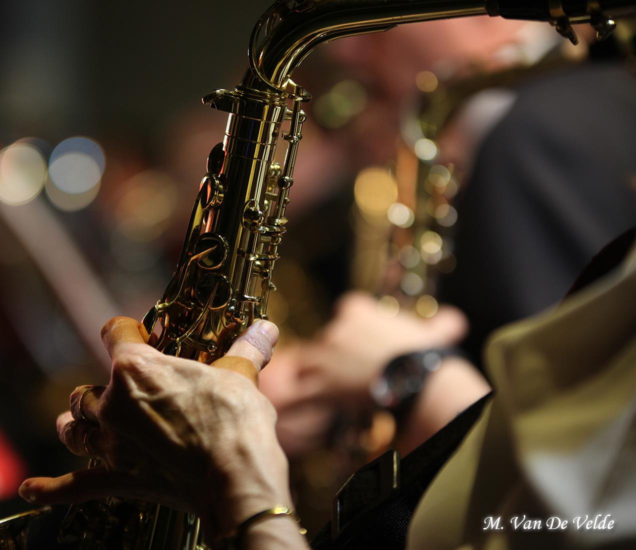 Concert-gala-à-JEMAPPES-(MVDV)-02avr17-(424)